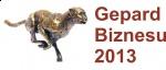 Tytuł Gepard Biznesu 2013 dla firmy TECHBUD